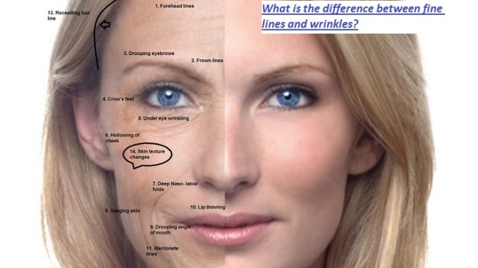 What is the Difference Between Fine Lines and Wrinkles?